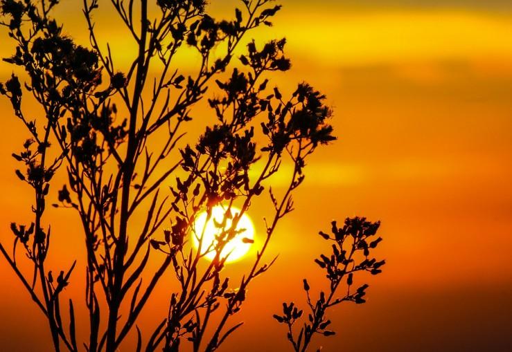 sunset-203188_1280